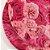 Sousplat Jacquard flores rosas - Imagem 2