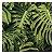 Quadro para parede decorativo Costela De Adão verde - Imagem 1