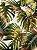 Tecido Jacquard Costela De Adão folhas verde terracota - Imagem 2