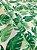 Tecido Tricoline Costela De Adão - Imagem 3