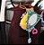 Peixinho Espelho - Imagem 1
