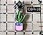 Cursor com Pingente Nº 5 - Prata - Cactus - Imagem 4
