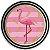 Prato de Papel - Flamingo - 08 unidades - Imagem 1