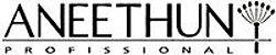 Aneethun Style Cera Texturizadora Força 2 Efeito Seco 65g  - Imagem 3
