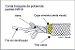 Corda de Segurança Poliamida 12mm NR18 Rolo com 100 Metros - Imagem 3