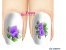 Películas de unha (SerieLP) -Orquídea Lilas - Imagem 1