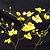 "Oncidium Aloha Iwanaga ""Trilabelo"" - ADULTA - Imagem 1"