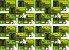Torta De Neem Nim Com Alho + Ade + Probióticos 20 Kg - Imagem 1
