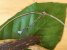 Colar Difusor Pêndulo dos Chakras - Imagem 5