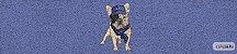 Kit Cozinha  Pet 22 - Imagem 2
