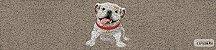 Kit Cozinha  Pet 26 - Imagem 2