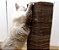 Cat Tower Losango - Imagem 3