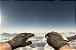 ★ Specialist Gloves | Buckshot (Minimal Wear) - Imagem 2