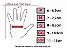 Luva X11 Fit X Feminina Preta, Tecido Arejado, Touch Screen, Poliéster e Neoprene - Imagem 4