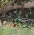 IRRIGADOR GIRATORIO 3 JATOS TRAPP - Imagem 2