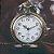 WOLF Relógio De Bolso Incrível Colar Cadeia Pingente Bronze - Imagem 1