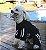 Roupa de Cachorro Inverno Frio Moleton Caninas + Calça - Imagem 2
