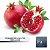 Pomegranate Deluxe - 10ml | TPA - Imagem 1