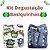 Kit Degustação Basiquinhas- Little e Bloomz- 2 fraldas e 2 absorventes - Imagem 1