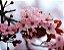 Cerejeira Okinawa - 10 sementes frescas - Imagem 2