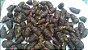 Batata Baroa, Mandioquinha, Salsa - 200 Rizomas - Imagem 2
