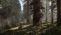 Red Dead Redemption 2 Xbox One - Mídia Digital - Imagem 6