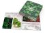 Catálogos e Revistas 15x10cm 24 páginas - Imagem 1