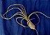 Tillandsia pseudobaileyi (Air Plant) - Imagem 3