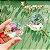 Óculos Kaleidoscópio - Três Cores - Imagem 11