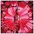 So Scandal! Jean Paul Gaultier Eau de Parfum  - Imagem 3