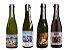 Cervejas Donner - Wil Grape Ale - 375ml - 4 unidades. - Imagem 1