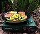 Grelha Grill Plate - Guepardo - Imagem 3