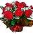 Buque 1dz rosas vermelhas importadas - Imagem 1