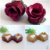Kit Forminhas Para Doces Luxo Botao De Rosa Casamento MARSALA - Imagem 1