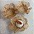 50 Forminhas Flor 4 Coracoes Dourado- F056 - Imagem 2