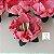 25 Forminhas Flor Gerbera Papel Rose- F062 - Imagem 2