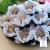 25 Forminhas Flor Gerbera Papel Branco- F062 - Imagem 1