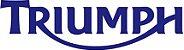 Capa protetora em carbono para Triumph Speed triple 1050   - Imagem 4