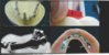 Fresadora 1000N  - Bio-Art - Imagem 11