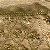 Caminho de mesa em seda para mesa com pedrarias douradas C209368 - Imagem 2