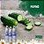 Desodorante com Extratos de Pepino e Chá Verde - Orgânico Natural - Imagem 2