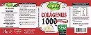 Colágenus Hidrolisado 1000mg - 60 comprimidos - Unilife Vitamins - Imagem 2