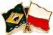 Bótom Pim Broche Bandeira Brasil X Polônia Folheado A Ouro - Imagem 1