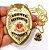 Distintivo Agente De Segurança Pessoal Folheado A Ouro + Bótom - Imagem 4