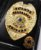 Distintivo Porta Funcional Agente Segurança Privada Brinde Bótom - Imagem 1