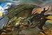 Guerra do Anel – 2º Edição - Imagem 2