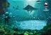 Сidades Submersas - Imagem 7