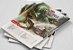 Dungeons and Dragons (5ª Edição) Starter Set Kit Introdutório - Imagem 4