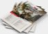 Dungeons and Dragons (5ª Edição) Starter Set Kit Introdutório - Imagem 3