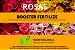 ROSAS - BOOSTER FERTILIZE - Age estimulando e potencializando a absorção de nutrientes 30ml  - Imagem 2